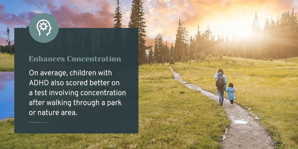 Enhances Concentration